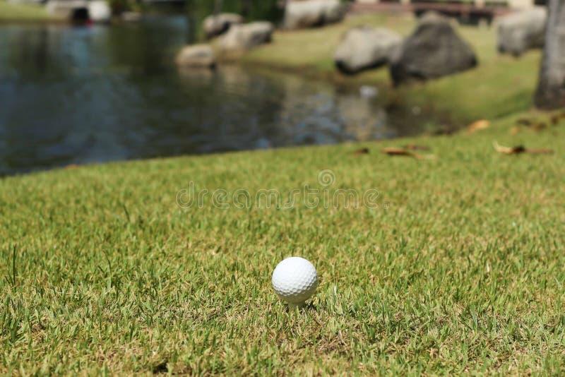 Pelota de golf y lago foto de archivo