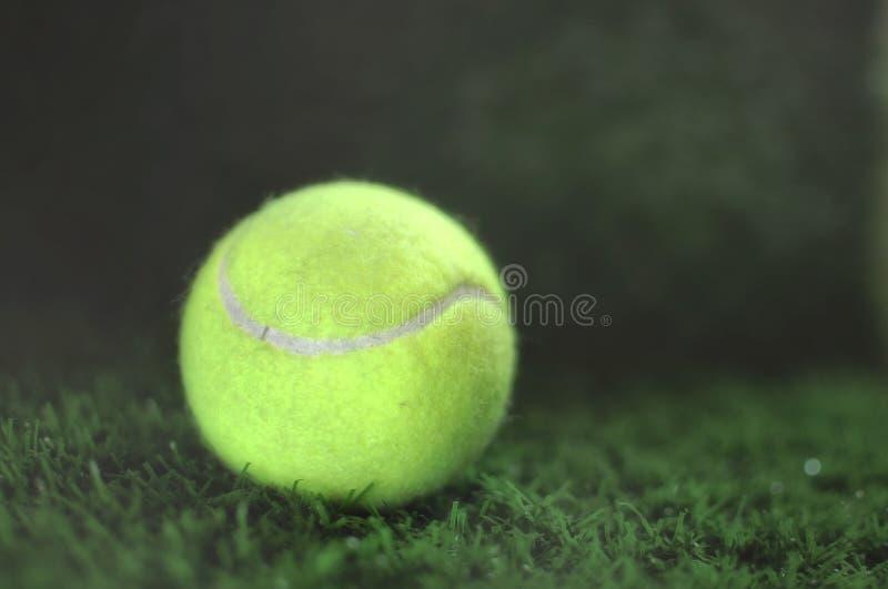 Pelota de tenis en la hierba verde imágenes de archivo libres de regalías