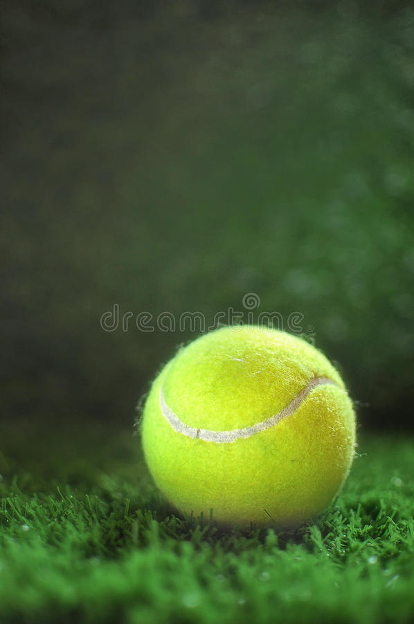 Pelota de tenis en la hierba verde fotos de archivo