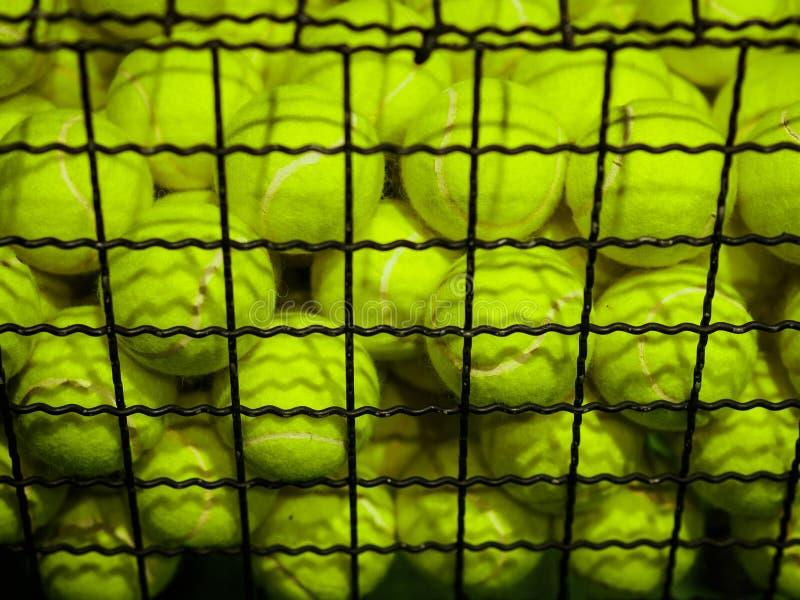 Pelotas de tenis en la cesta Concepto del equipo de deportes imagen de archivo