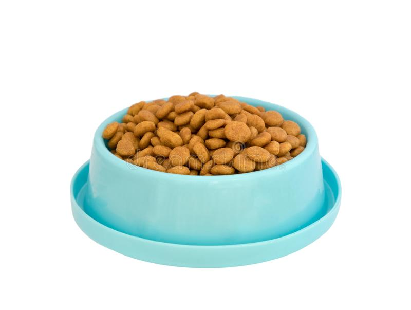 Pelotas do alimento para cães na bandeja plástica azul no fundo branco imagem de stock royalty free
