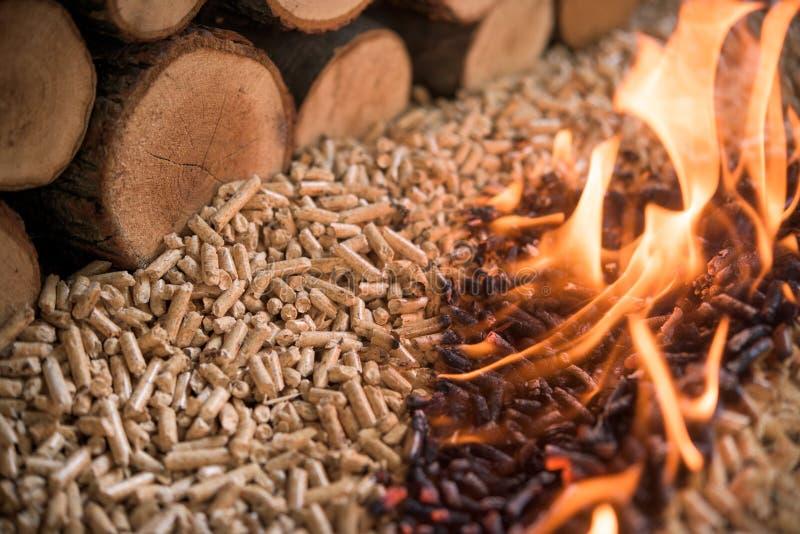 Pelotillas y madera ardientes de la haya fotografía de archivo