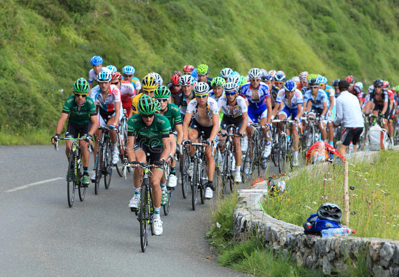 Download The peloton editorial image. Image of bikes, group, cycling - 20883325