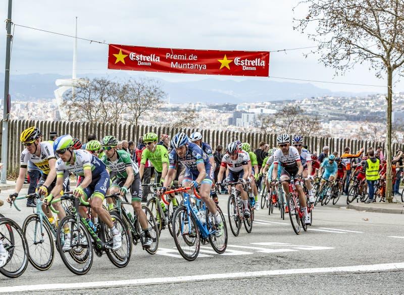 The Peloton in Barcelona - Tour de Catalunya 2016 stock photo