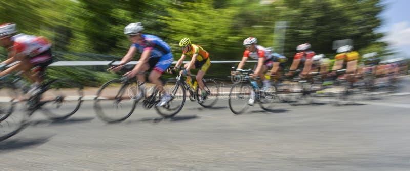 Peloton de cavaleiros da bicicleta em uma raça no movimento fotos de stock royalty free