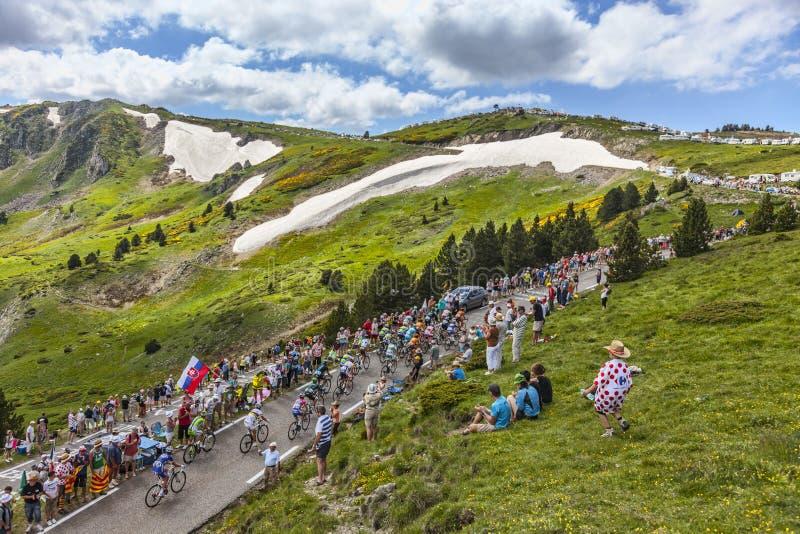 The Peloton In Mountains Editorial Photo