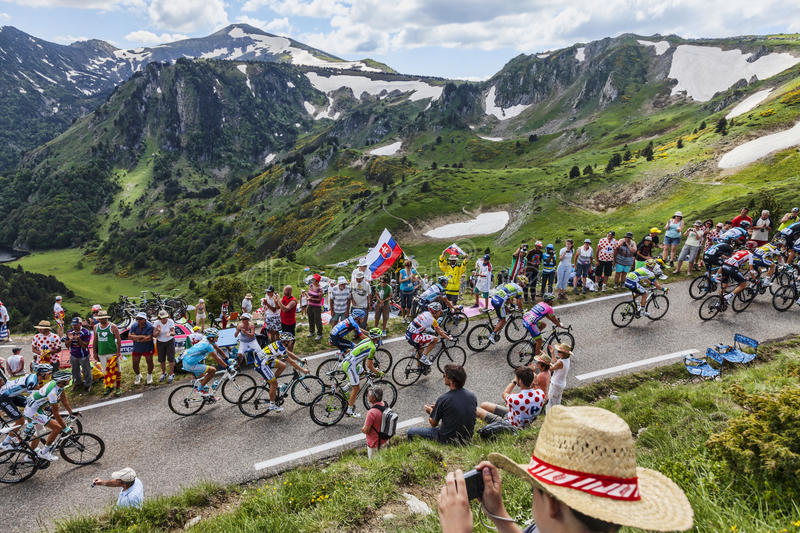 Download The Peloton in Pyrenees editorial photography. Image of athletes - 33026777