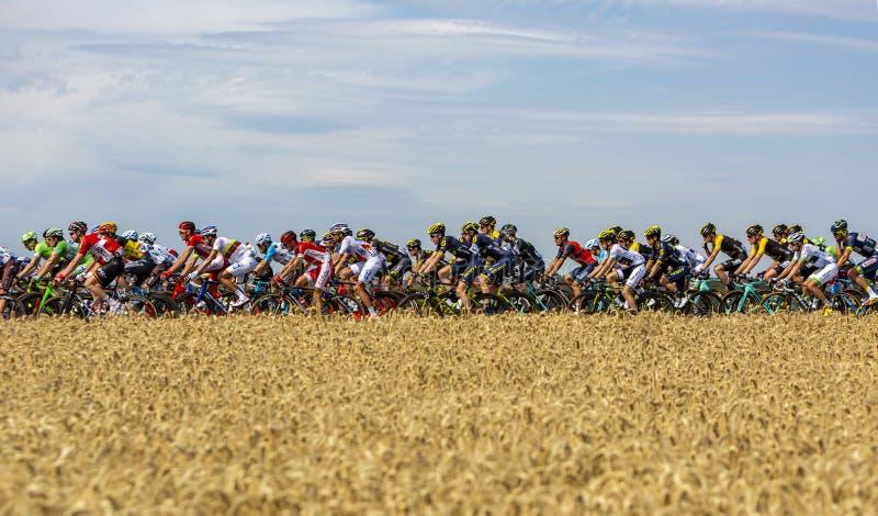 Peloton - Ronde van Frankrijk 2017 royalty-vrije stock fotografie