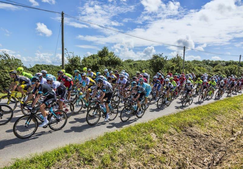 Download The Peloton - Tour De France 2016 Editorial Photography - Image: 92243752