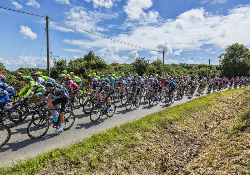 Download The Peloton - Tour De France 2016 Editorial Image - Image of competition, coutryside: 92167570