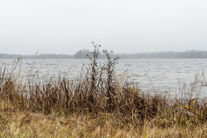 Pelouse côtière sèche et surface d'eau froide dans le brouillard avec une rive distante floue à peine visible à l'horizon images libres de droits