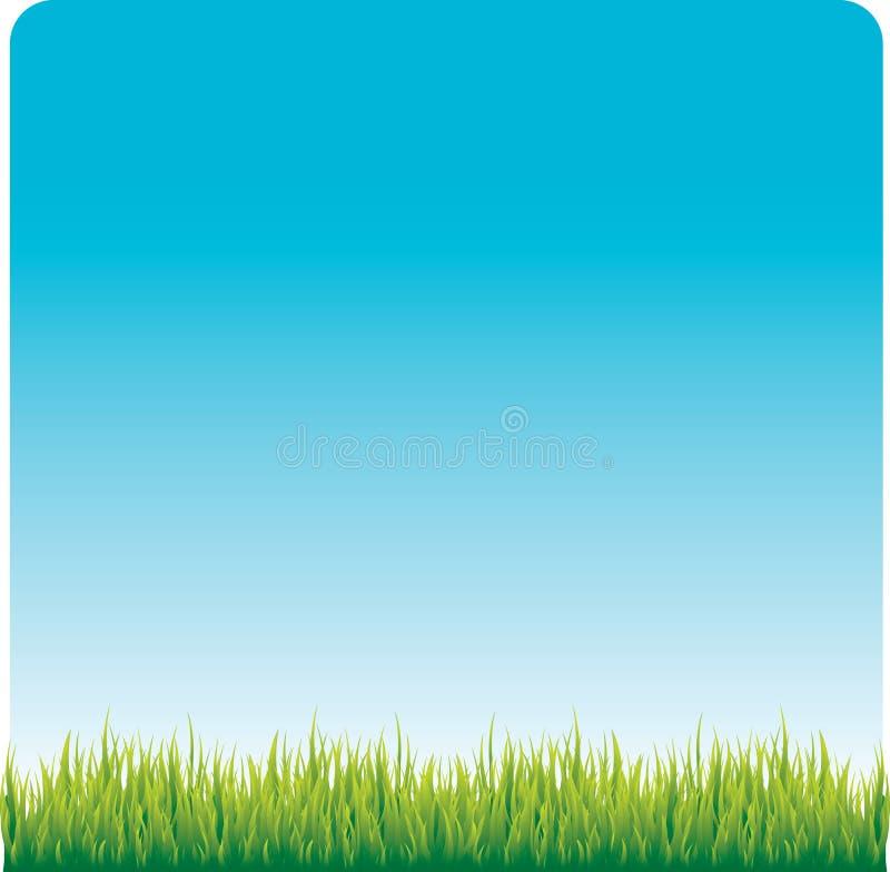 Pelouse d'herbe illustration libre de droits