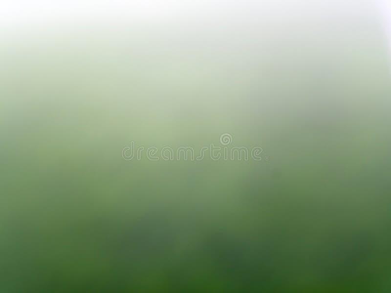 Pelouse verte et pleuvoir lourd au foyer de tache floue comme fond image stock