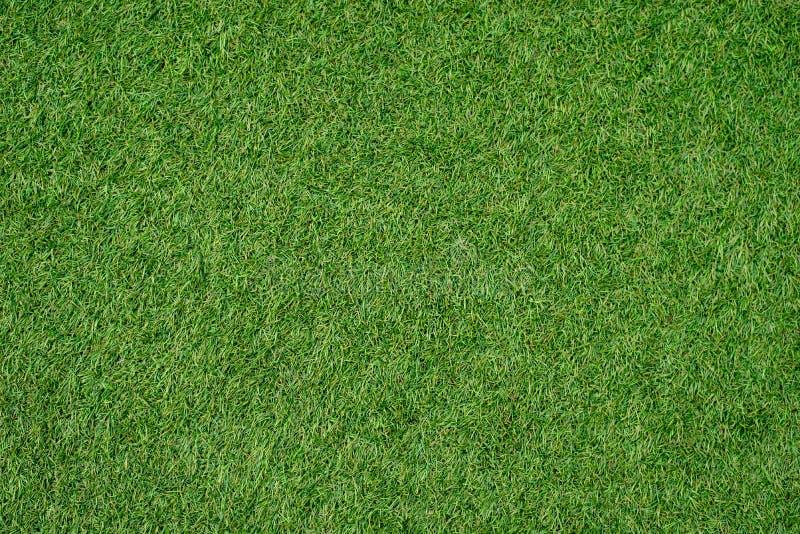 Pelouse verte pour le fond Fond d'herbe verte Texture Vue supérieure images libres de droits