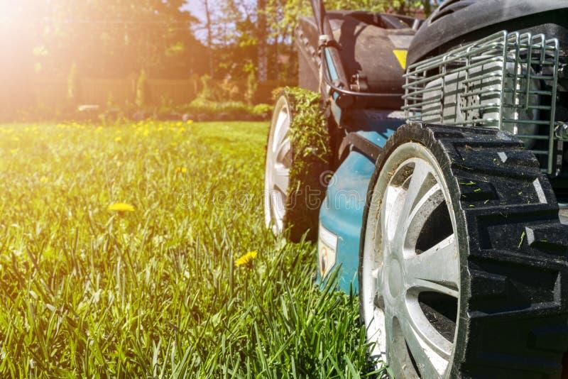Pelouses de fauchage, tondeuse à gazon sur l'herbe verte, équipement d'herbe de faucheuse, outil de fauchage de travail de soin d photos stock