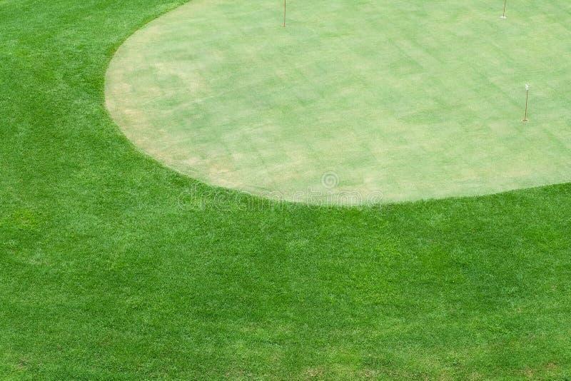 Pelouses vertes des terrains de golf photos stock