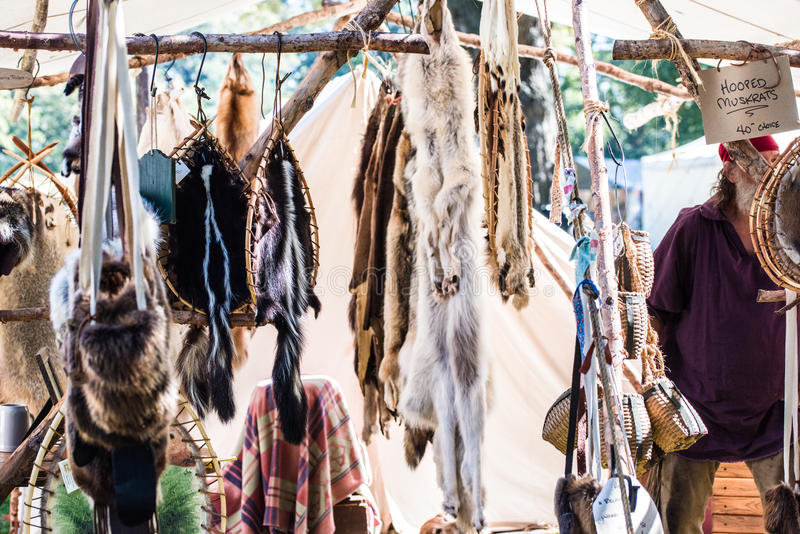 Pelts. Fox, skunk, linx and coyote pelts at a local rendezvous festival royalty free stock images