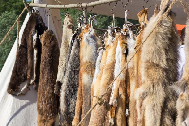 Pelts of fur animals hang on rope. Pelts of fur animals hang on a rope stock image