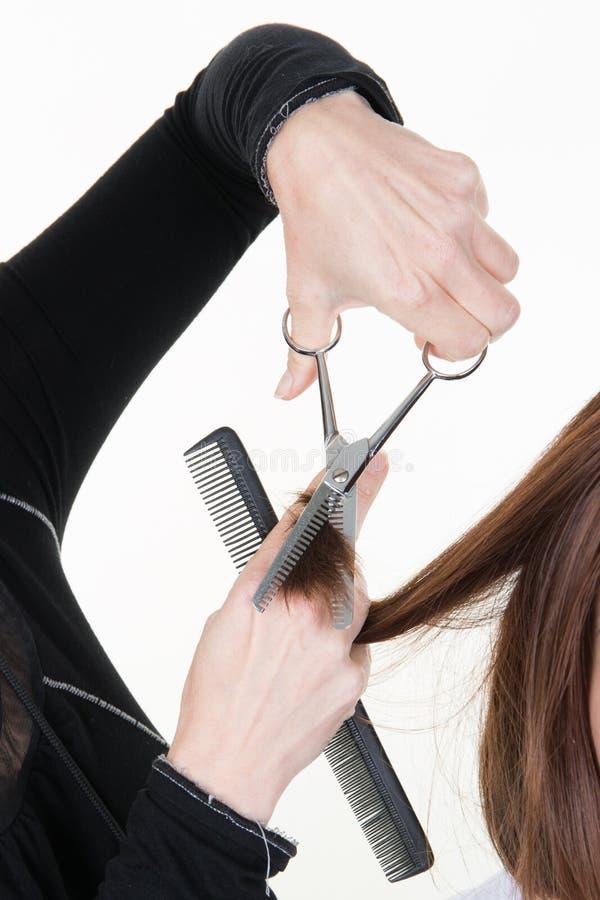 Peluquero del estilista que hace el primer del corte de pelo de la mano del equipo del trabajo con las tijeras imagenes de archivo