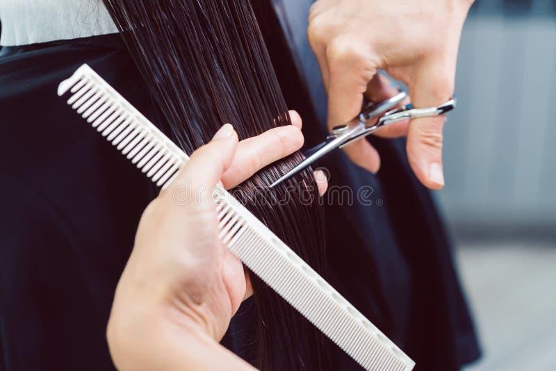 Peluquero que corta y que diseña el pelo de la mujer en su tienda foto de archivo