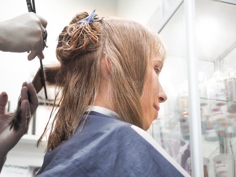 Peluquero que hace corte de pelo en salón de la peluquería Pelo del corte del peluquero Industria de la belleza imagen de archivo