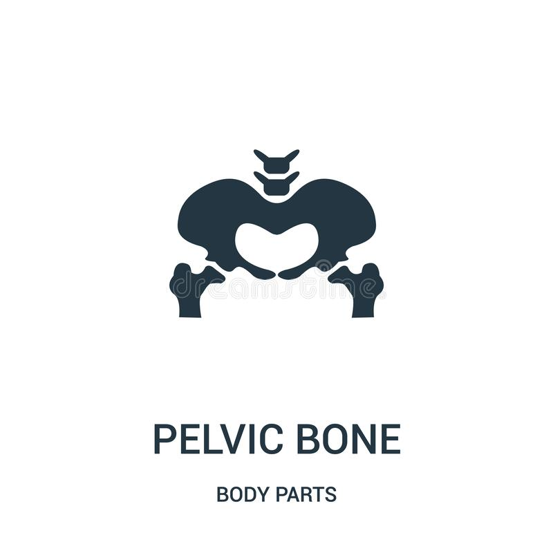 pelvic bone silhouette icon vector from body parts collection. Thin line pelvic bone silhouette outline icon vector illustration vector illustration