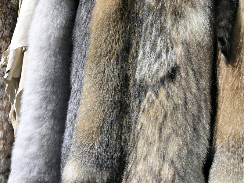 Pelze und Häute lizenzfreies stockfoto