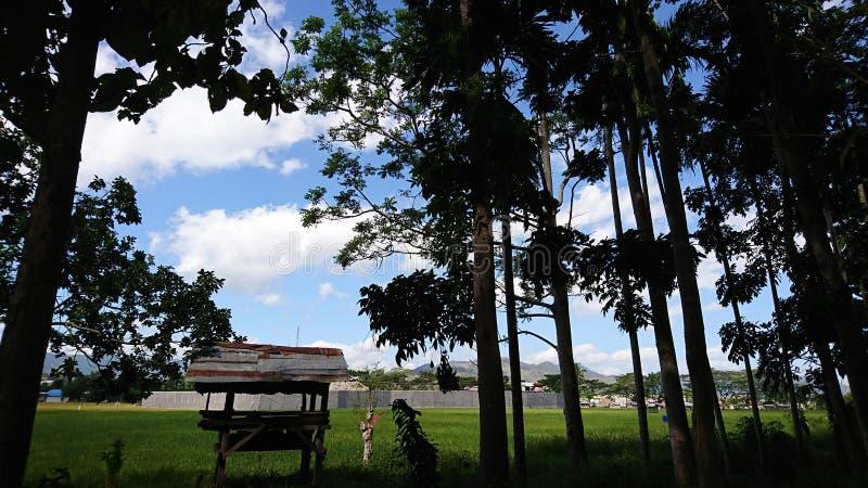 45 Pemandangan Alam Photos Free Royalty Free Stock Photos From Dreamstime