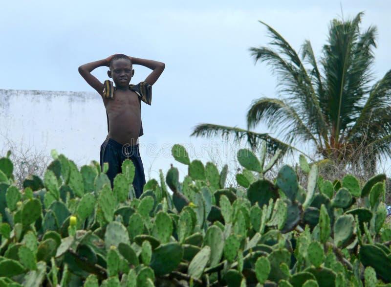 PEMBA, MOÇAMBIQUE - 5 DESEMBER 2008: Suportes africanos desconhecidos do menino imagem de stock royalty free