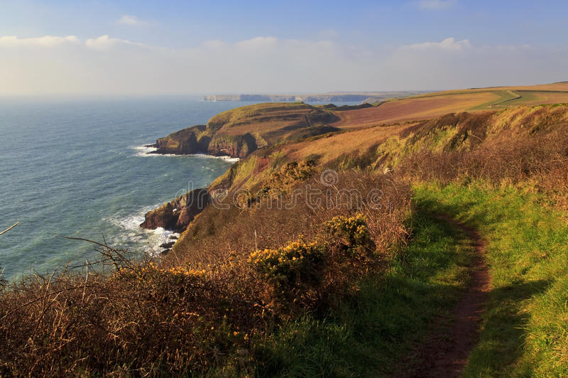 Pembroke Coastal Path and the wild Pembroke Coast Line with sun glowing on yellow gorse bushes. Pembroke Coastal Path and the Beautifully rugged Pembroke Coast stock image