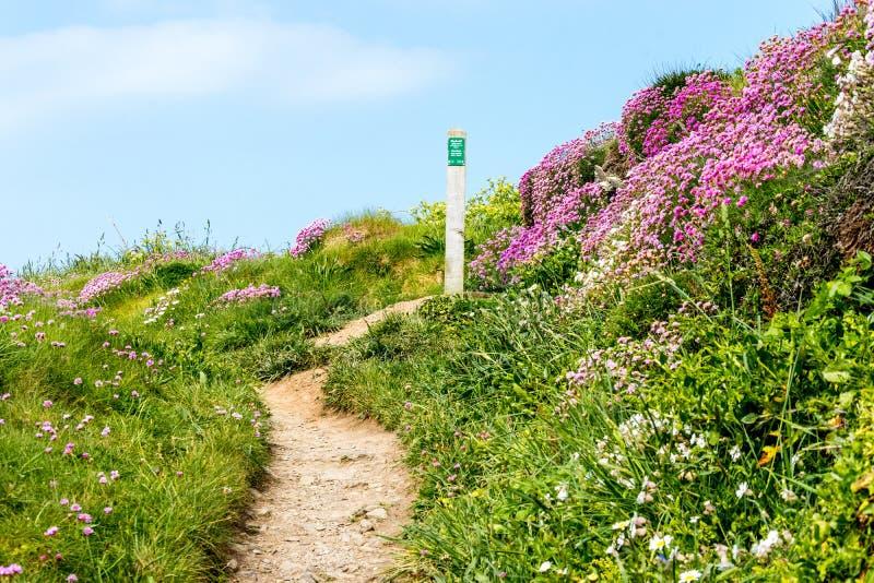 Pembroke Path stockfoto