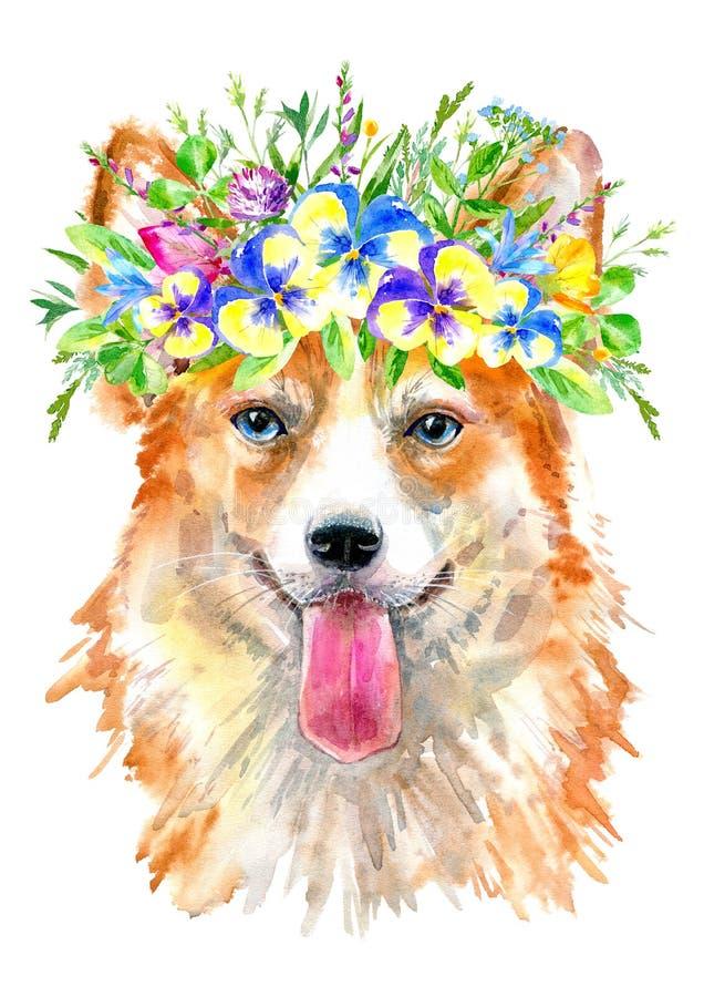 Pembroke Welsh Corgi stående Hälsningkort av en hund och en blom- krans vektor illustrationer