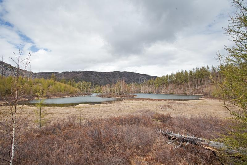 Península de Kamchatka, natureza fotos de stock royalty free