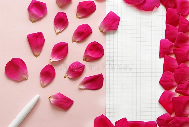 Pen, rose petals and piece of paper on the pink background. Concept of beauty blogger work royalty free stock photography