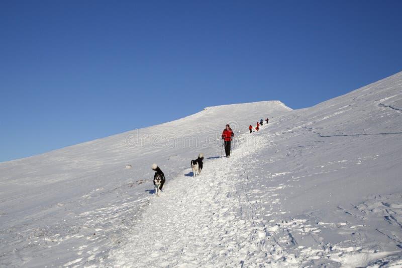 Pen y Fan mountain in winter stock photography