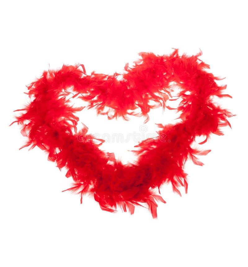Pena-boas vermelhas, forma do coração imagens de stock