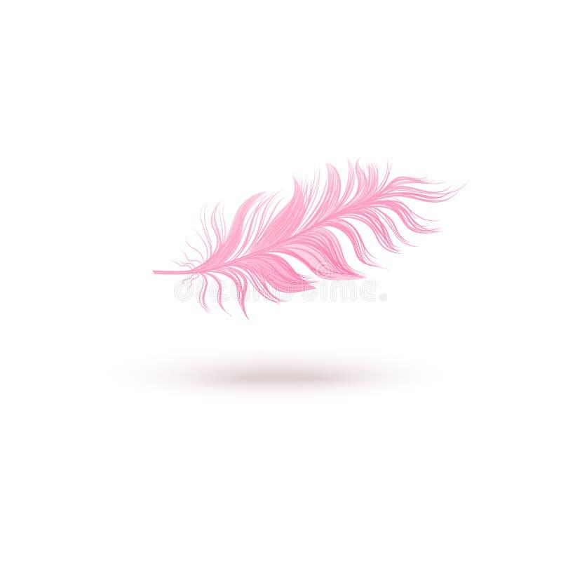 Pena de pássaro de flutuação cor-de-rosa isolada no fundo branco ilustração do vetor