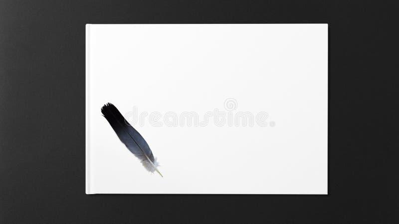 Pena de p?ssaro que encontra-se em um Livro Branco foto de stock royalty free