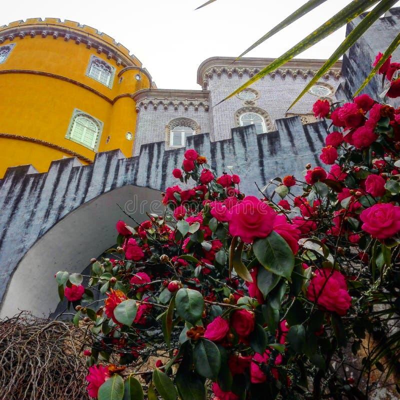 Pena pałac sintra zdjęcie royalty free