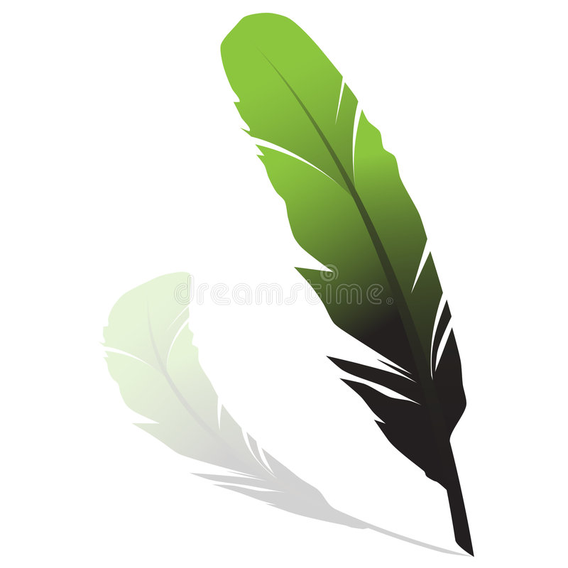 Pena verde ilustração royalty free