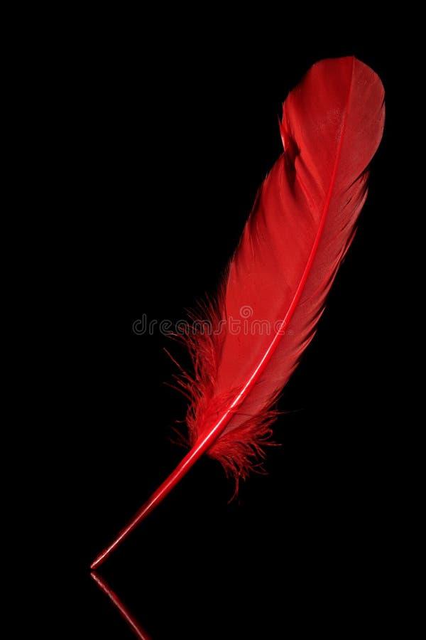 Pena vermelha