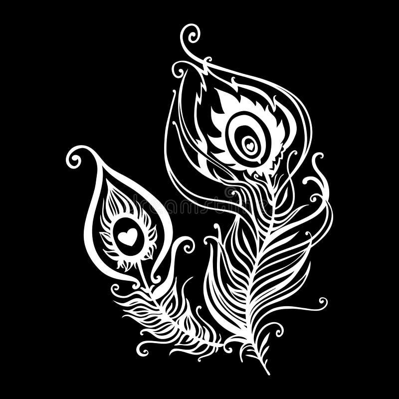 Penas bonitas do pavão ilustração royalty free