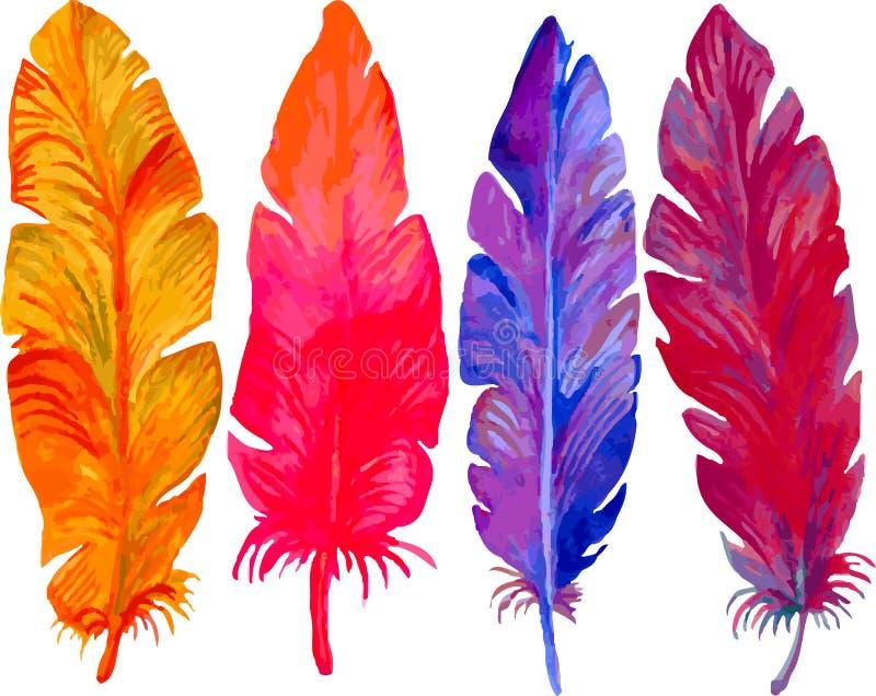 Penas coloridos bonitas brilhantes no fundo branco ilustração stock