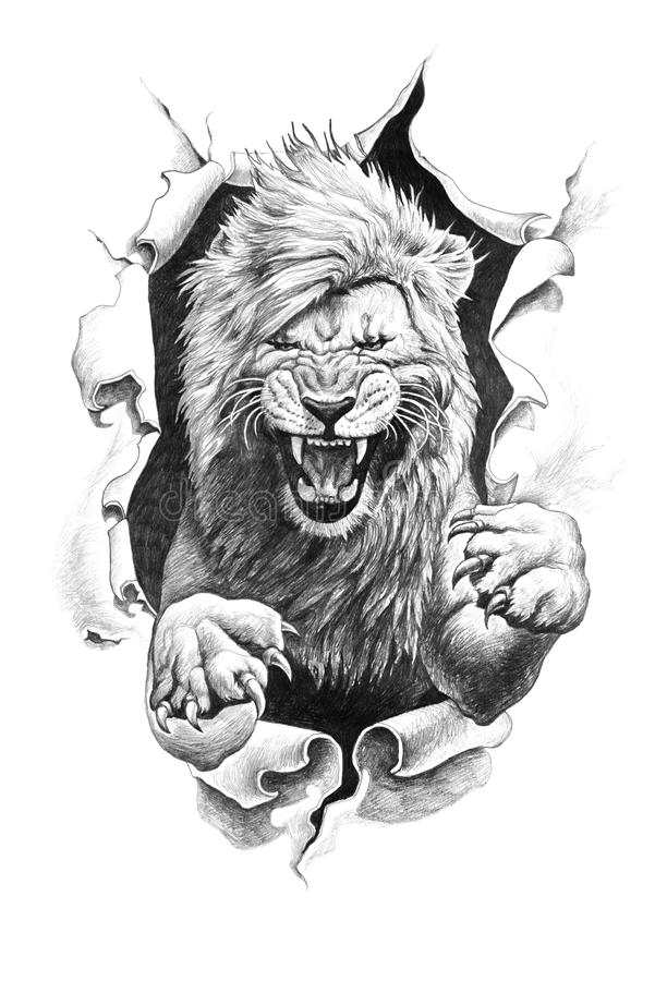 Pencil drawing of a lion stock illustration