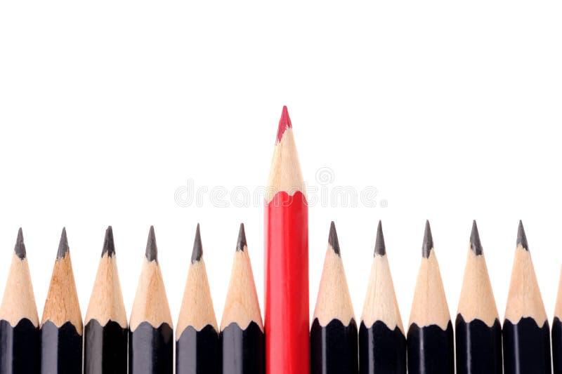 Pencils isolated on white background. Two colours pencils isolated on white background, descriptive, group, design, frame, school, image, multi, art, set royalty free stock image