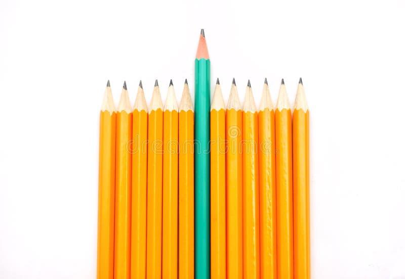 Download Pencils stock image. Image of macro, individualism, important - 33521187