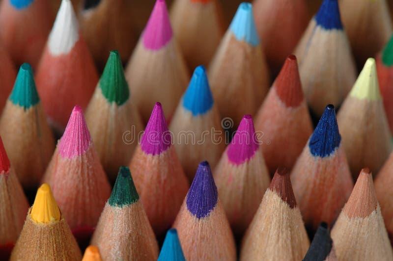 pencils trä royaltyfri fotografi