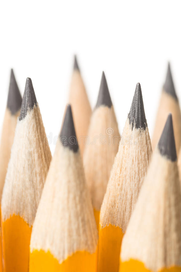 Pencils on white. Close up of bunch of sharpened pencils against white background stock photography