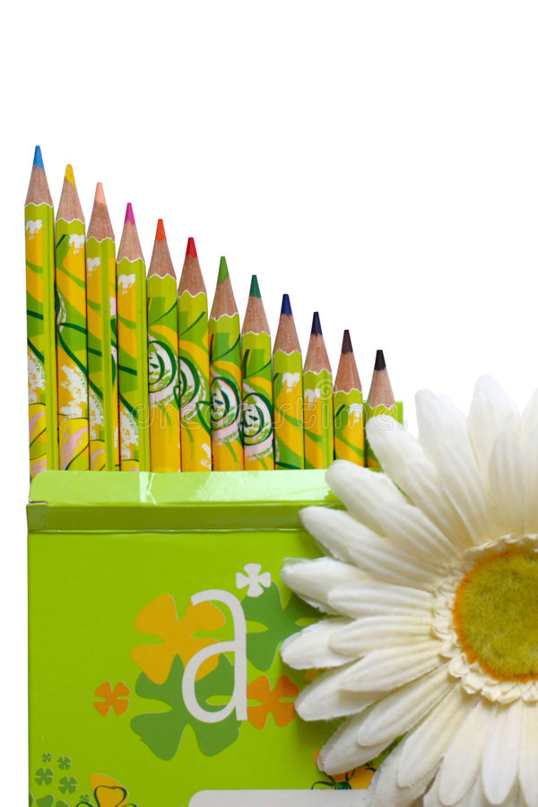 Pencils and white daisy flower royalty free illustration