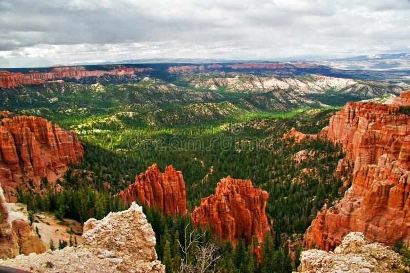 Pendii del canyon di Bryce immagine stock